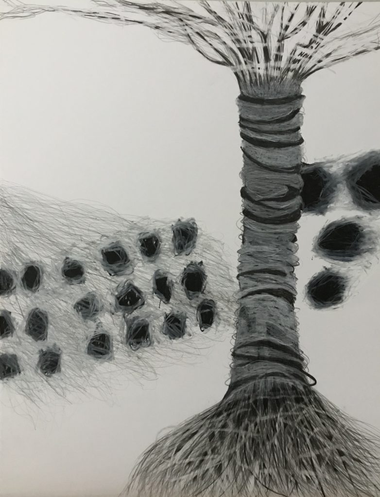 Zeichnung Bristolkarton Graphit